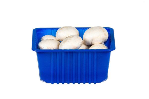 Лоток - контейнер для грибов 140х118х68мм 250гр