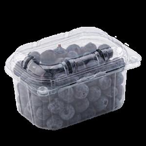Контейнер для ягод, TL5-250/76, перфорированный контейнер